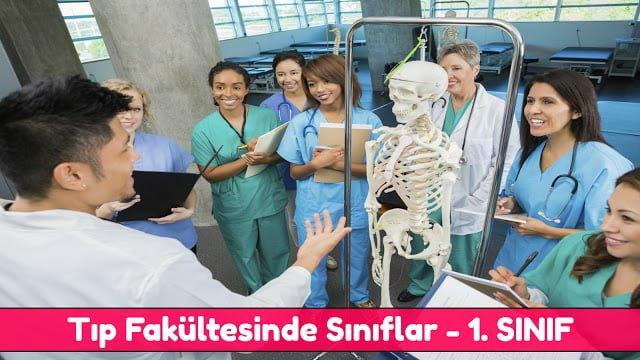 1. sınıf, birinci sınıf, birinci sınıf dersleri, dersler, stajlar, tıp 1, tıp dersleri, tıp fakültesinde ders çalışmak, Tıp Fakültesinde Sınıflar, tıp okumak, tıpta sınıflar,