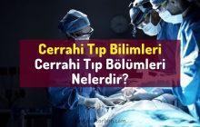 Cerrahi Tıp Bilimleri Nelerdir? Cerrahi branşlar, cerrahi bölümler, cerrahi dallar