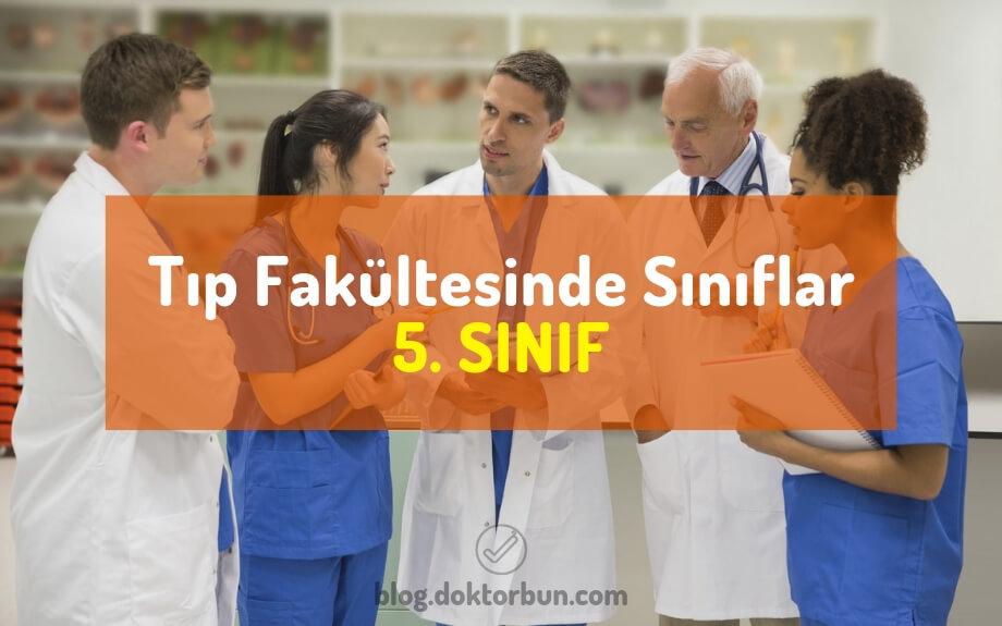 Tıp Fakültesinde Sınıflar - 5. SINIF - Doktor Bun