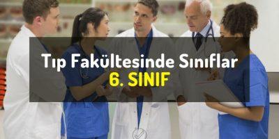 Tıp Fakültesinde Sınıflar - 6. SINIF - Doktor Bun